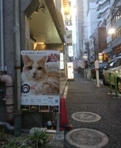 いやし亭ほご猫茶屋さん(東京・新橋)でホッコリしよう🐱🍵
