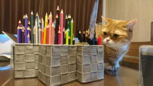 色鉛筆が増えました❤🐥