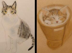 親子で猫さんの絵を描く👩👦✨