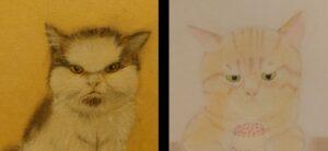 怒り顔の猫さん😾、困り顔の猫さん😹