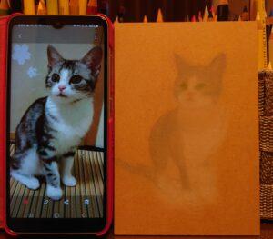 1年以上猫さんを継続して描き続けると…